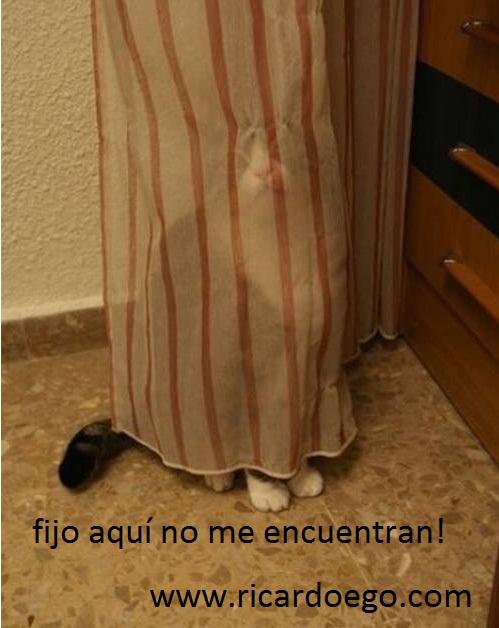 humor-adictamente.blogspot.com (2)