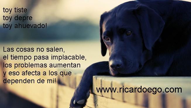 perro-triste-1