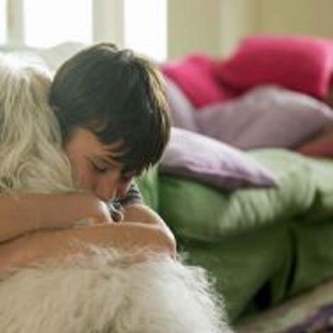 Consejos-para-dejar-al-perro-solo-en-casa-2
