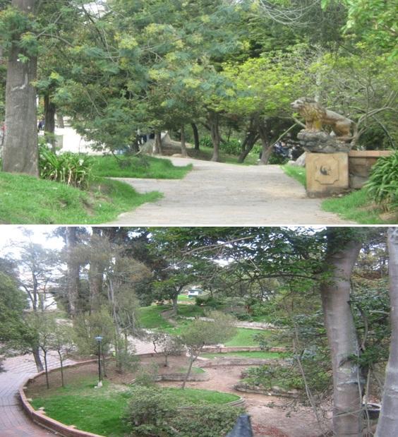 parque-bosque