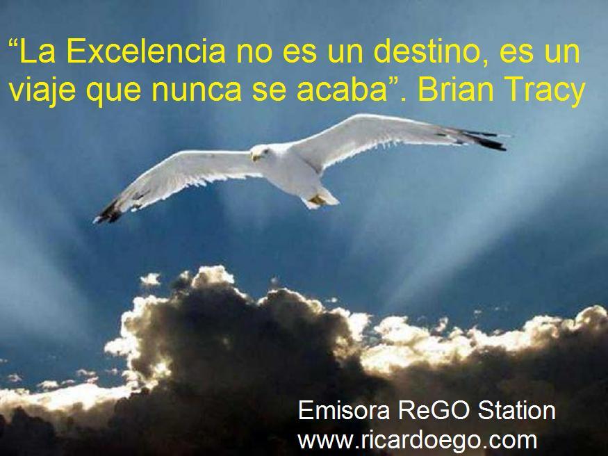 excelencia-3